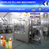 Автоматические 2 в 1 Bottle Pulp Juice Packing Machine (RGF16-6)