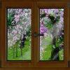 Doppeltes isolierendes Niedriges-e hochwertiges hölzernes Glasaluminiumfenster