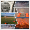 Yingchangdi Hot Dipped Galvanized Temporary Fence per Construction.