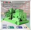 Conjunto usado o nuevo del GASERO del gas natural CNG de Siemens de generador