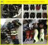 Bequeme verwendete Großhandelsmänner, Dame, Kind-Schuh-Sport-Schuhe (FCD-005)