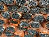 De Profielen van het aluminium voor Venster en Deur en Gordijngevel 20