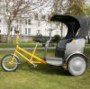 3つの車輪のタクシーの人力車Pedicab