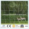 Buona rete fissa del campo del pascolo del fornitore/rete fissa animale con il prezzo più basso
