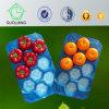 GV do fornecedor de China para as bandejas descartáveis da fruta feitas do padrão 100% da segurança alimentar do Polypropylene do Virgin