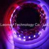 Indicatore luminoso di strisce del LED 5050SMD flessibile WS2811 RGB con CE RoHS