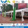 12mx55m White Aluminum PVC Tent für Car Parking