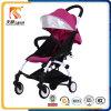 L'unità di elaborazione spinge il passeggiatore del bambino con la sede di automobile e Carrycot