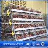 Huhn Cage für Geflügelfarm für Nigeria