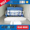 Maquinaria aprovada do gelo de bloco de Containarized do CE industrial