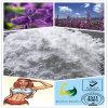 Extracto Sclareol CAS 564-20-5 de la hierba de la alta calidad