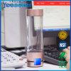 Filtre riche d'Ionizer de l'eau d'hydrogène de la nouvelle génération