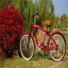 Bicicleta eléctrica de la bici de la playa del hombre de la batería de litio de 250W 36V 10ah