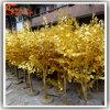 나무가 휴일 훈장 정원 벵골 보리수 Ficus에 의하여 설치한다