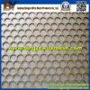 Metal perforato Mesh Used in Decoratice