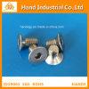 Surtidor de oro Ss 316 del moho anti tornillos de 3/4  ~4  socket principales planos