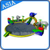 PVC Material Inflatable Water Park Games, Inflatable Dolphin Water Slide con Pool
