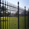 Wrought poco costoso Iron Fence da vendere