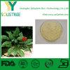 自然な朝鮮人参のルートエキスPowder/5% - 80% Ginsenosides