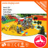 Playhouse Kid Playground Slide di Guangzhou Large Outdoor per Kids