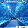 トンネルのAquairum透過アクリルのタンク