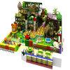 China Manufacture Forest Theme Indoor Playground para Children