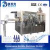 Máquina de relleno purificada modificada para requisitos particulares del agua de la planta de agua