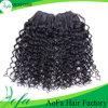Индийские человеческие волосы 100% девственницы выдвижения курчавых волос