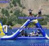 Eccitare giocando i giochi gonfiabili dell'acqua della trasparenza di acqua di caduta libera gonfiabile della trasparenza (MIC-436)