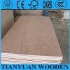 Madera contrachapada comercial de la chapa de madera natural para los muebles, la construcción decorativa o el embalaje