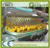Linha enlatada automática cheia da produção alimentar