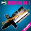 Lampadina NASCOSTA del fascio della lampada allo xeno singola (H4-1 NASCOSTI)