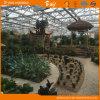 耐久のポリカーボネートの温室の庭の温室