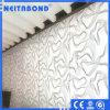 Het Samengestelde Comité van het aluminium met StereoOppervlakte Acm
