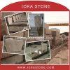 Ioka Phoenix/lapide variopinta unica del granito (TS-318)