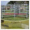 Оцинкованная Верховая Железный забор панели Крупный рогатый скот панель