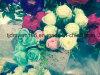Grüne preiswerte künstliche Blumen-grosse Hauptrosen-Blume für Hochzeits-Stadiums-Dekoration
