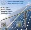 1000W 5in 원심 분리기 DC 태양 관개 펌프 시스템