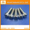 Antirost hochwertige SS 316 3/4  ~4  Kontaktbuchse-Kopfschrauben
