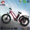 소녀에게 전기 뚱뚱한 타이어 바닷가 Tricycl 도로 자전거 선물