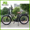 숙녀 Ce/En15194를 가진 전기 바닷가 함 자전거
