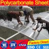 Anli 플라스틱 아름다운 폴리탄산염 정원에 의하여 이용되는 온실
