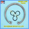 Fournir la rondelle à ressort d'acier inoxydable d'anneau, les circlips internes (HS-SW-0005)