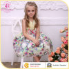 День рождения Dress для Children, Hot Sale Гуанчжоу Kids Clothes