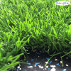 Artificial Tricolor Grass para Landscaping