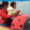 Шлюпка Powred воды Bumper Батареей 12V 33ah для 1-2 малышей с пробкой тела FRP и брезента PVC