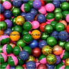 Rang Paintball van het Gebied van 0.68 Duim de Koude Bestand voor Gebruik in de Winter