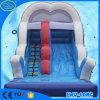 il Funfair della tela incatramata del PVC da 0.6 millimetri ~0.9 millimetri scherza le trasparenze di acqua gonfiabili