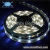 luz de tira de los 5m LED