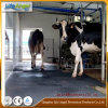 Couvre-tapis en caoutchouc animal de couvre-tapis de vache de feuille en caoutchouc en caoutchouc de cheval
